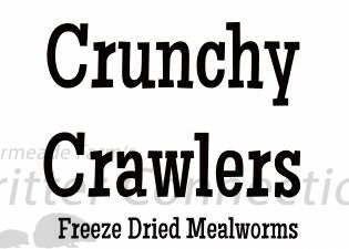 Crunchy Crawlers - Mealworms